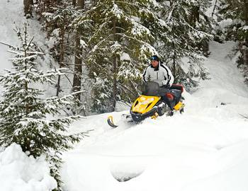 A snowmobiler on the mountain surrounded by trees